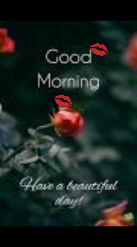 #good----morning