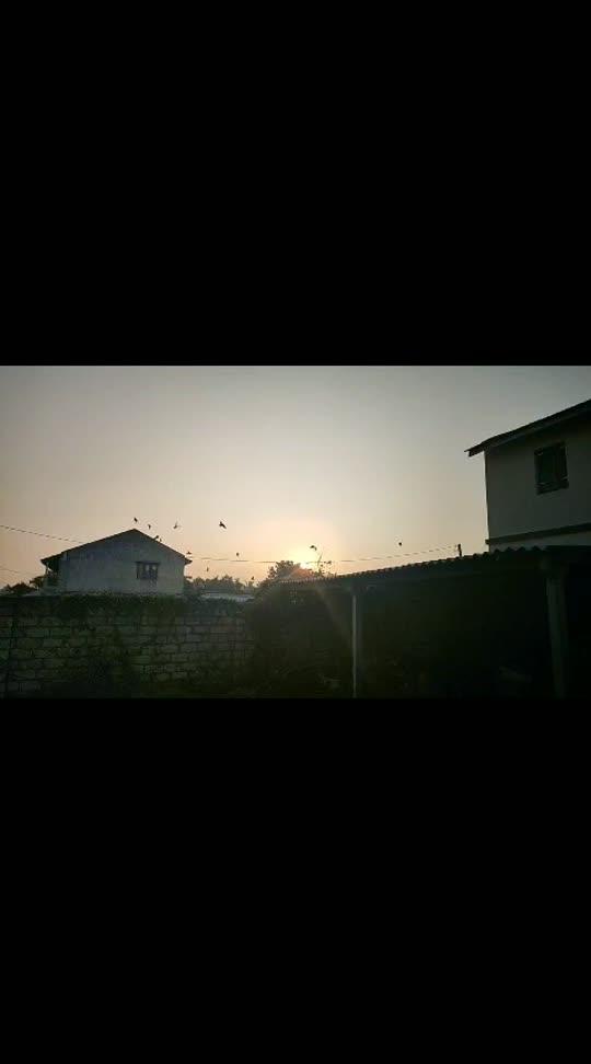 #share   #with   #your   love  #love  #loveness  #roposostar  #love-song   #feeli  #thursday   #feeling #fly  #sunset