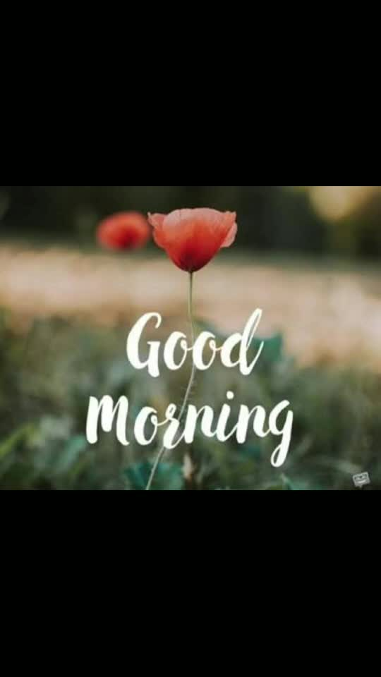 #goodmorning #wisheschannel #good-morning #wishes