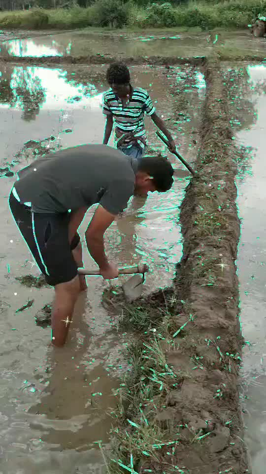 #ropo_farmer