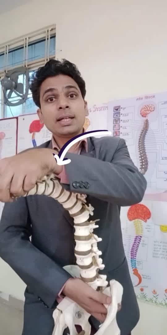 For sitting job person spin pain