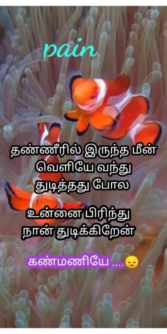 காதல் வலி ...😔 #lovepainsong #tamilsong #tamilsonglyrics #tamilwhatsappstatus #tamilbeats #motivation #tamilmotivationstatus