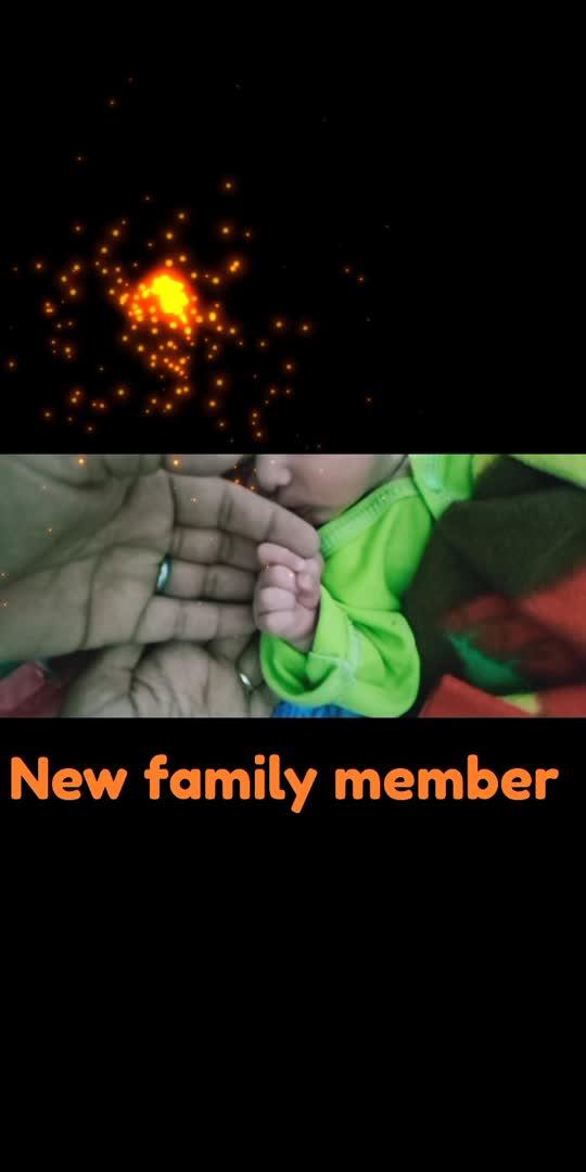 new family member#familylove #familytime