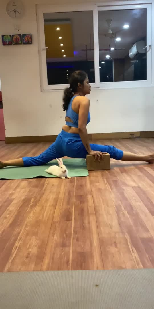 #happiness #lifestyle #lifegoals# yoga#splits #splitpractice